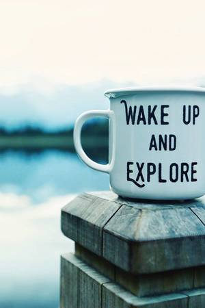 Kubek wake up and explore